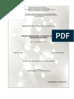 Plan OPDIII 2daJornada PDF