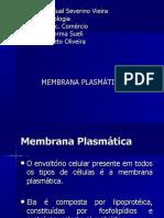 54664663 Colegio Estadual Severino Vieira Slide Membrana
