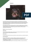 método_anatomía aguafiestas