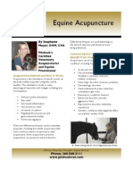 PC 110428 Equine Acupuncture Flyer FINAL