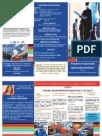Brochure Programa de Formacion Impulsando Empresas