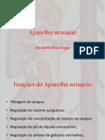Anatomia_do_Rim.pdf