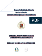 4 Modulo 3-Osteologia_Axial