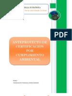 anteproyecto certificacion (No vigente)