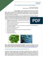 Cultivos Celulares II Euge