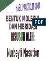 Nurbeyti Nasution Hibridisasi Molekul