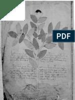 Anónimo - El manuscrito Voynich (Idioma desconocido)