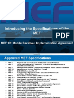 Overview of MEF22