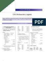 CTS Declaracion y Registro