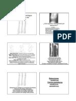 5.Patol Cartilagos Crecim Vignati 10