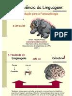 NeuroLinguagemAnielaImprota