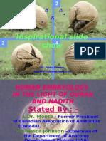 Human Ebbryology-1