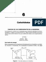 Chp06 carbohidratos