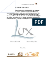 17236183 Luxsoap Marketing Report