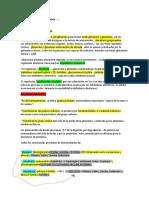 BIOSINTESIS AMINOACIDOS RESUMEN
