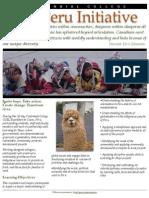 The Peru Initiative