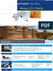 Madhya Pradesh Review
