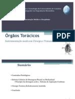 Órgãos Torácicos