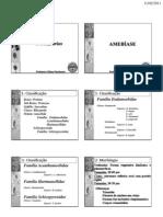 Parasitologia AULA 4