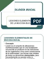 2.1 Lesiones Element Ales de Cavidad Bucal