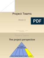 Week 8 Project Teams 10