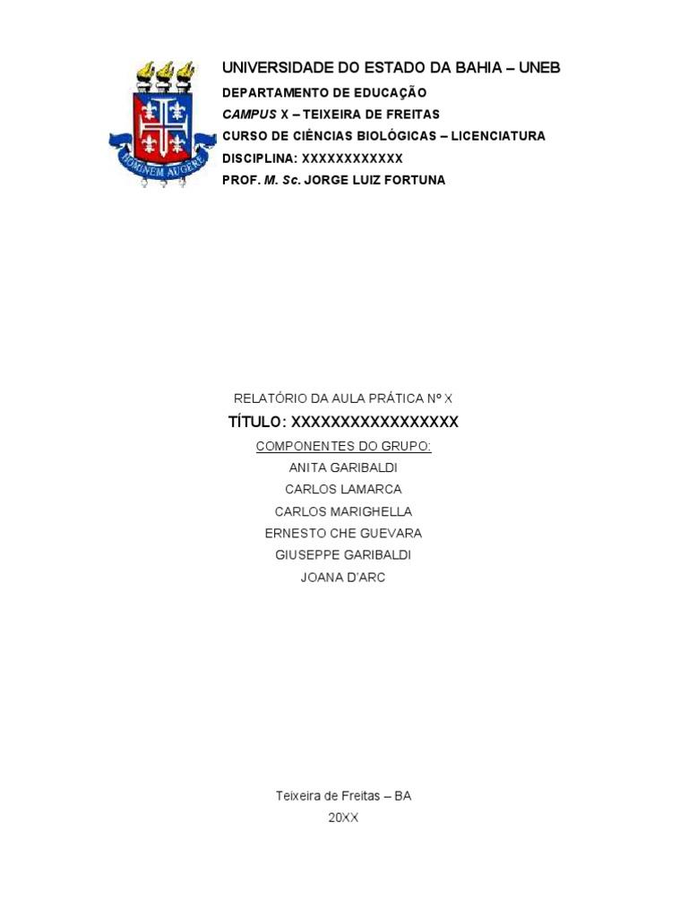 Estrutura de um relatório acadêmico