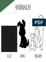 Activity 4 - Pets