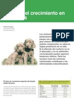 6 Control del crecimiento en cachorros