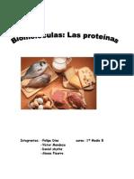 trabajo proteinas