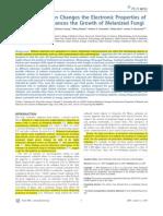 Radiation & Growth of Melanized Fungi