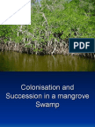 Colonisation and Succession in a mangrove Swamp
