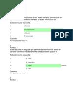 Quiz Corregidos