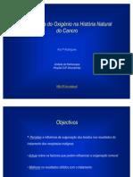 Influência da hipóxia nos tratamentos de radioterapia