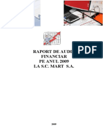 Raport Audit-Proiect Final
