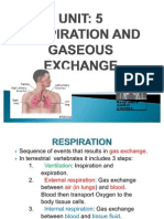 UNIT 5 Respiratory Systems Bio2T10