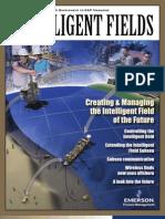 Intelligent Fields Supplement