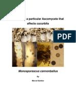 Monosporascus Cannonball Us - Pathogen Profile Review by Marcel Barbier