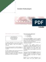 Gestion Multi-projets VD