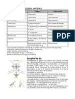 51872351-Vectores-de-parasitos