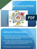 Submarine Photosynthesis