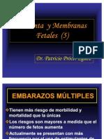 19 Placenta y Membranas Fetales (5)
