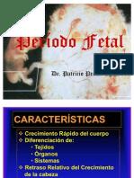 14 Período Fetal