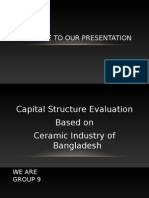Capital Stucture 1