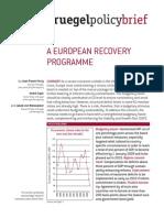 PBf 17112008 European Recovery Programme