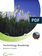 * IEA Biofuels Roadmap