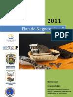 Indice Del Plan de Negocios