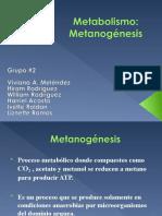 Metanogenesis-1