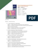 Atlas de Procedimientos Quirurgicos