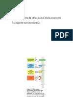 5.Aulas 9a14.Transporte Transmembranar