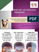 Fisiopatogenia de Las Cefaleas Primarias